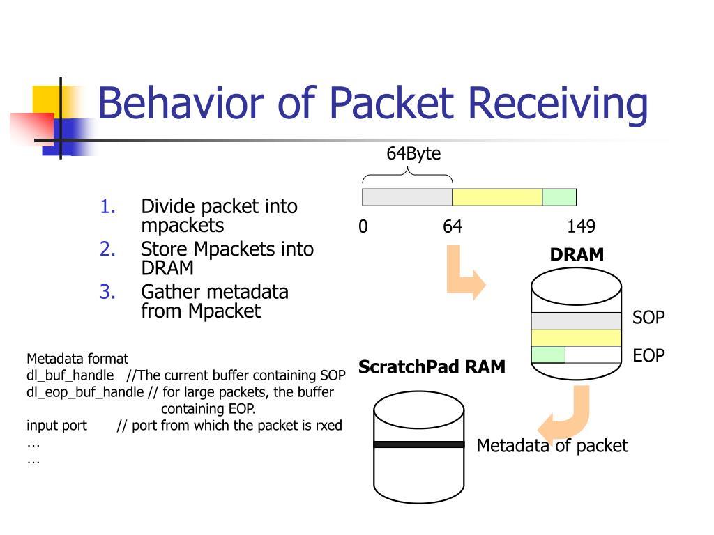 Metadata of packet