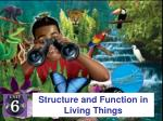 structure and function in living things