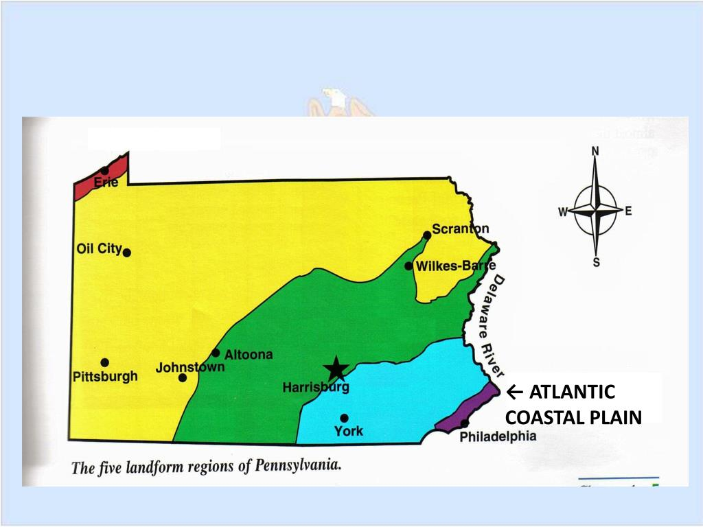 ← ATLANTIC COASTAL PLAIN