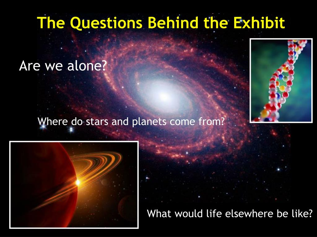 The Questions Behind the Exhibit