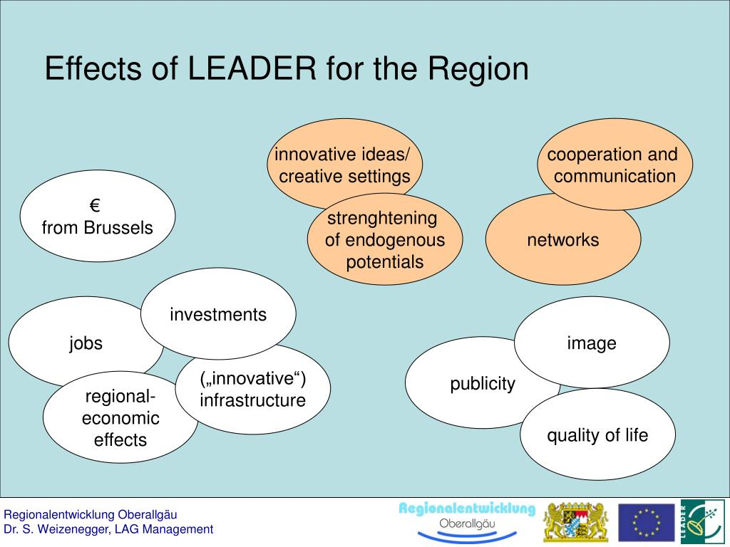 Effects of LEADER for the Region