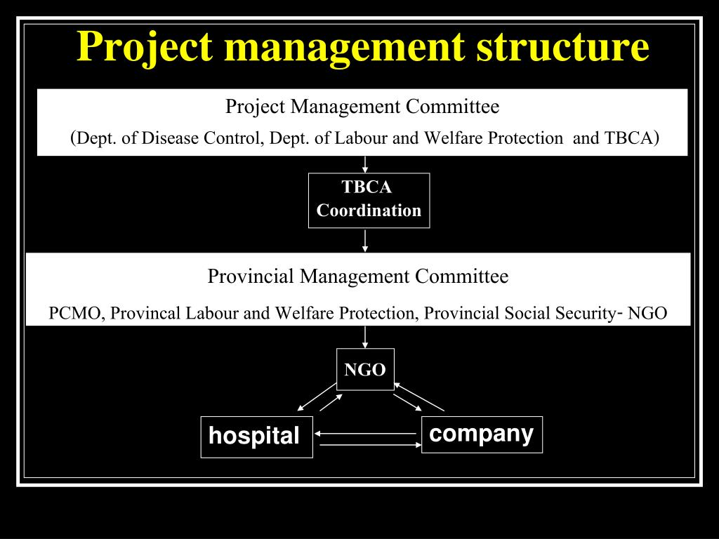 Project management structure