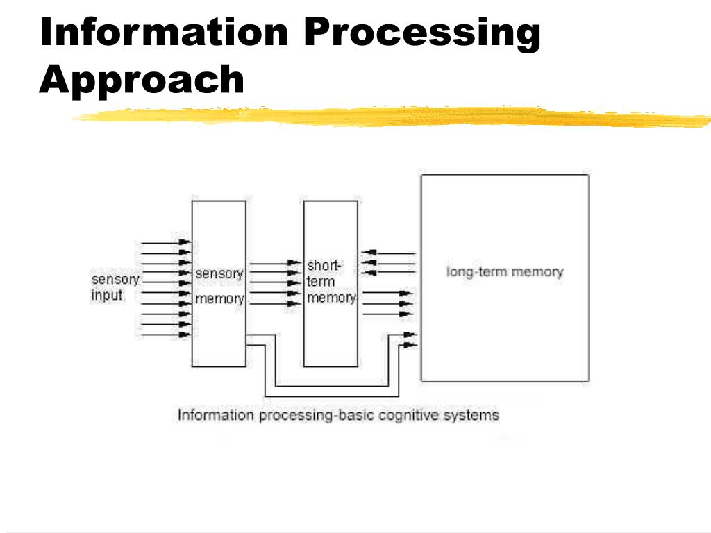 Information Processing Approach