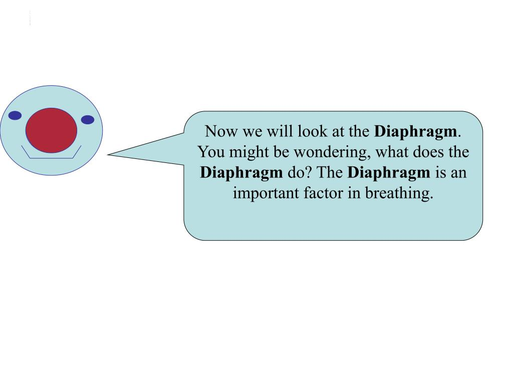 Intro to Diaphragm