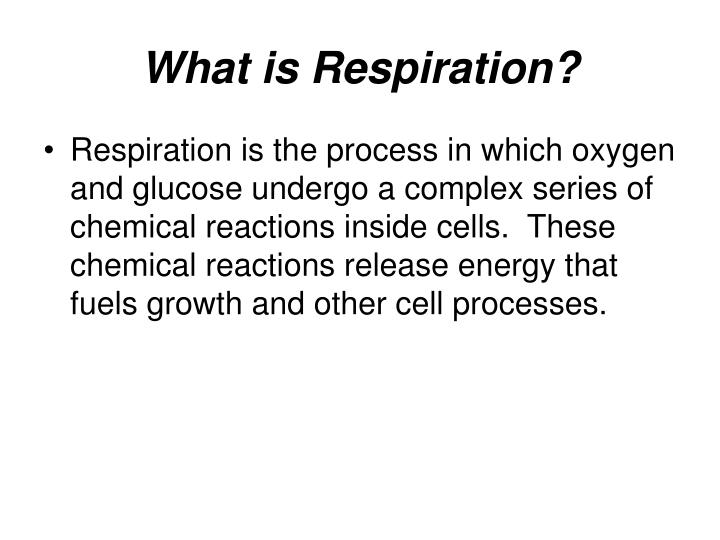 What is respiration l.jpg