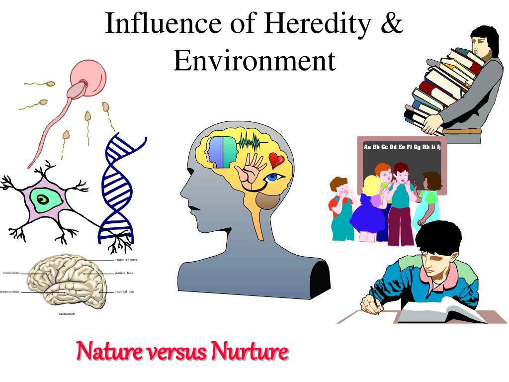 Influence of Heredity & Environment
