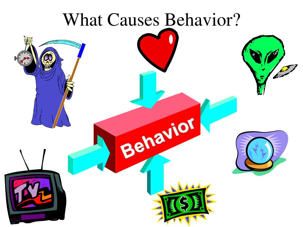 What Causes Behavior?