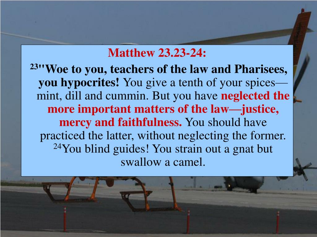 Matthew 23.23-24: