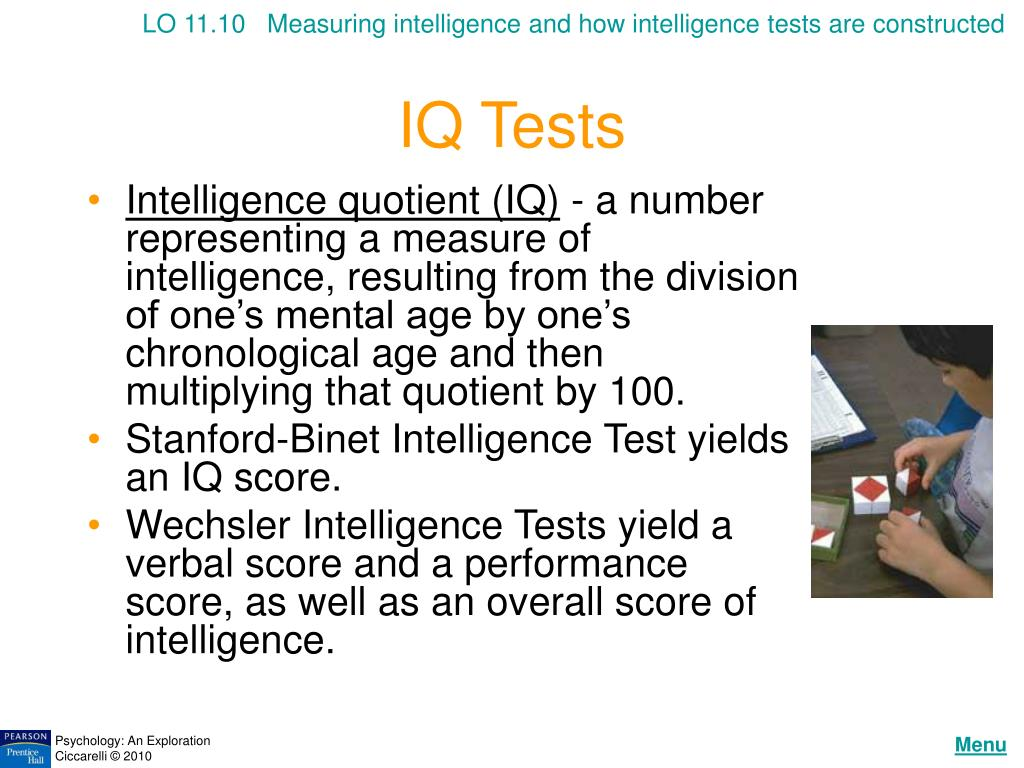 LO 11.10   Measuring intelligence and how intelligence tests are constructed