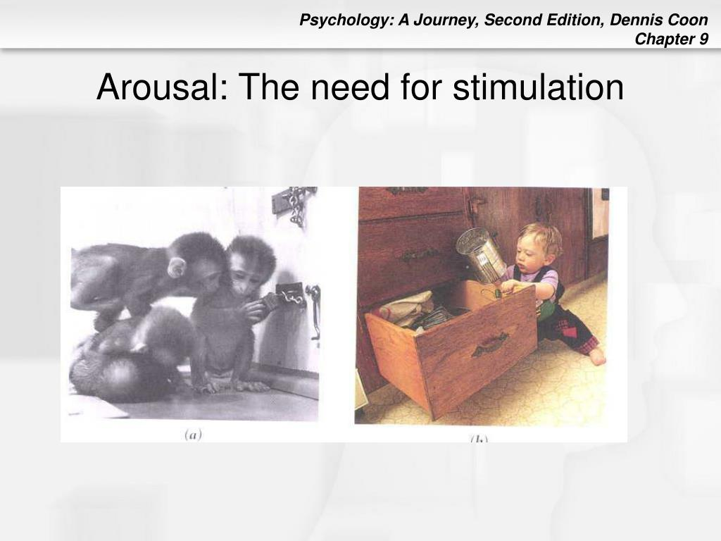 Arousal: The need for stimulation