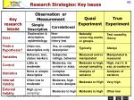 research strategies key issues