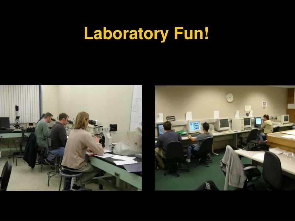Laboratory Fun!