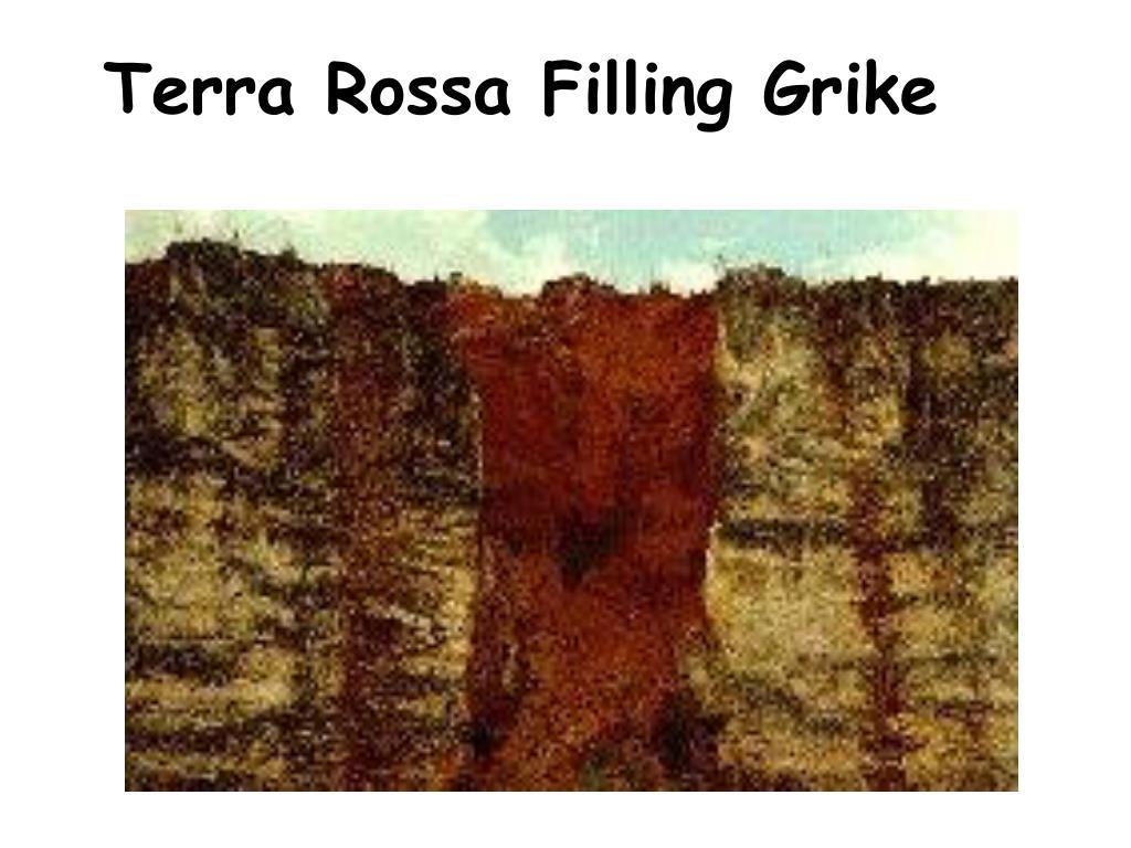 Terra Rossa Filling Grike