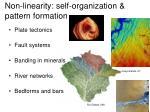 non linearity self organization pattern formation