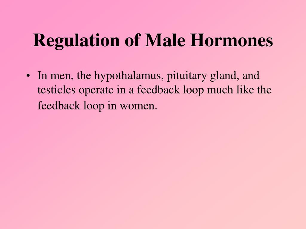 Regulation of Male Hormones