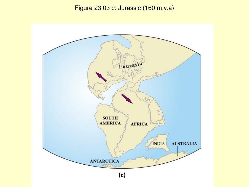 Figure 23.03 c: Jurassic (160 m.y.a)