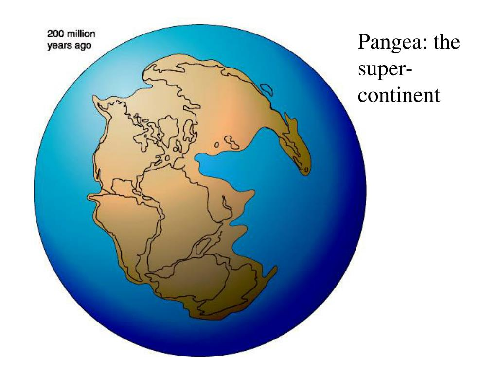 Pangea: the