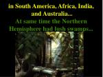 in south america africa india and australia at same time the northern hemisphere had lush swamps