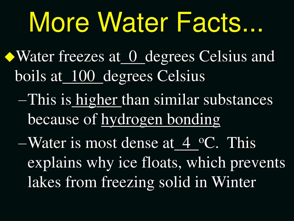 More Water Facts...