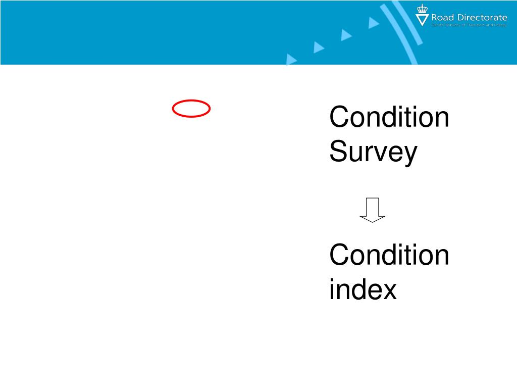 Condition Survey