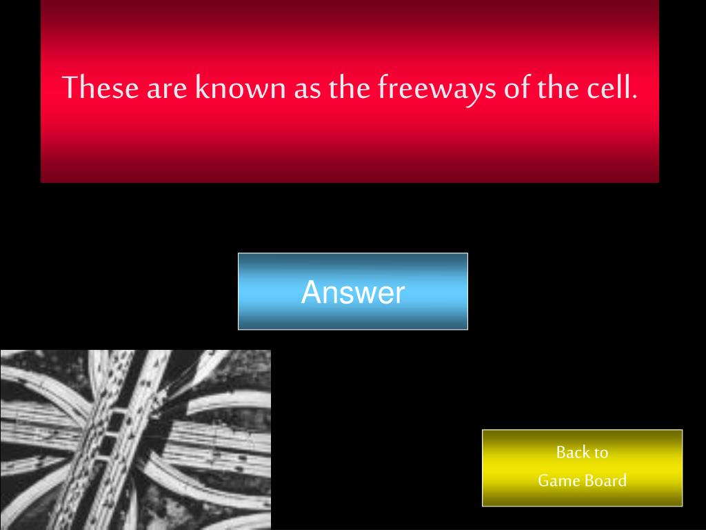 These are known as the freeways of the cell.
