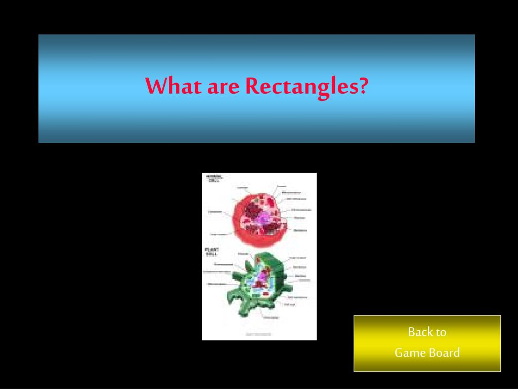 What are Rectangles?