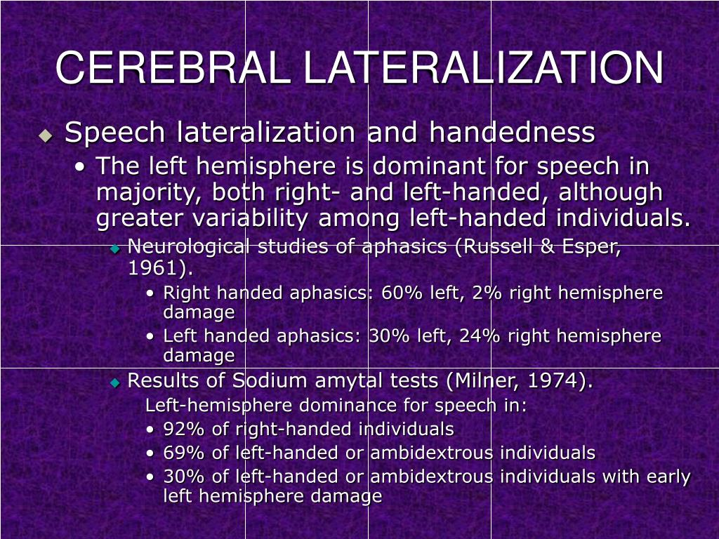 psy 240 cerebral lateralization and functionality