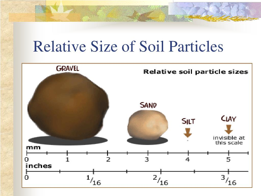 Relative Size of Soil Particles
