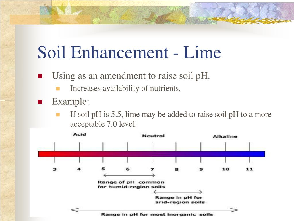 Soil Enhancement - Lime