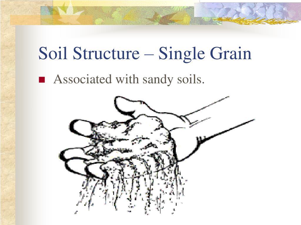 Soil Structure – Single Grain