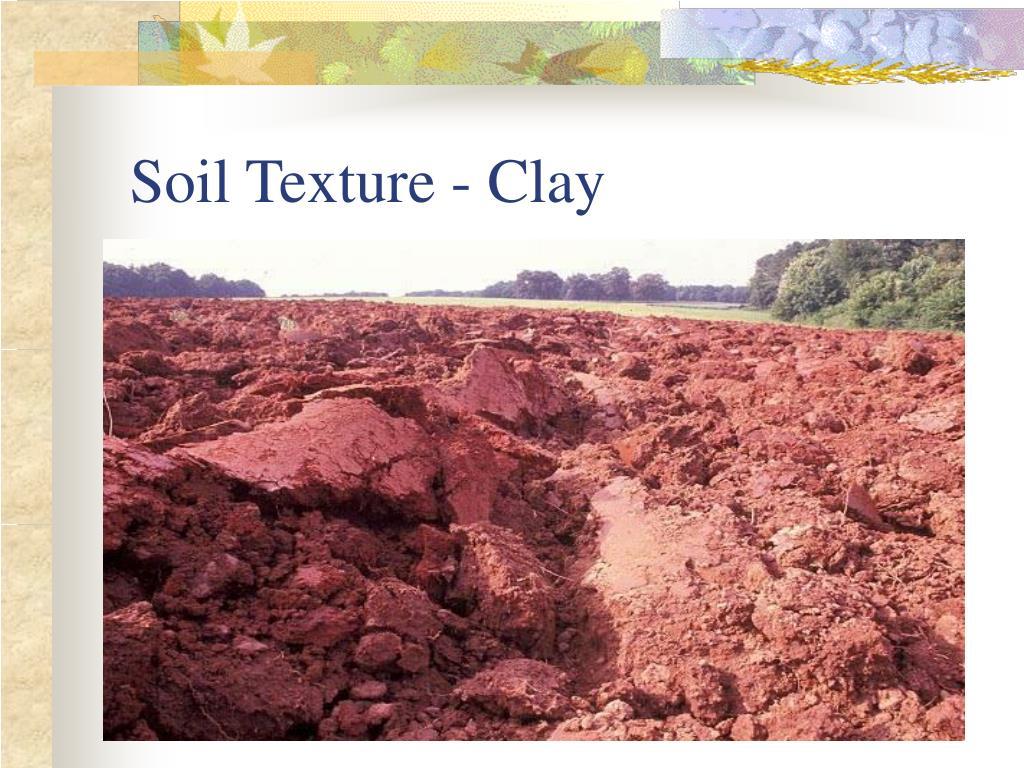 Soil Texture - Clay