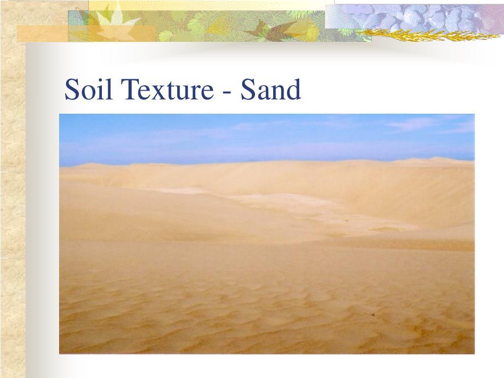 Soil Texture - Sand