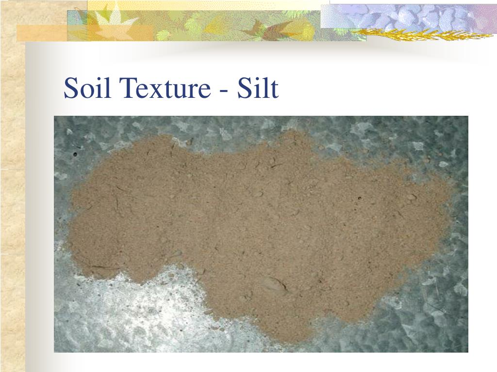 Soil Texture - Silt