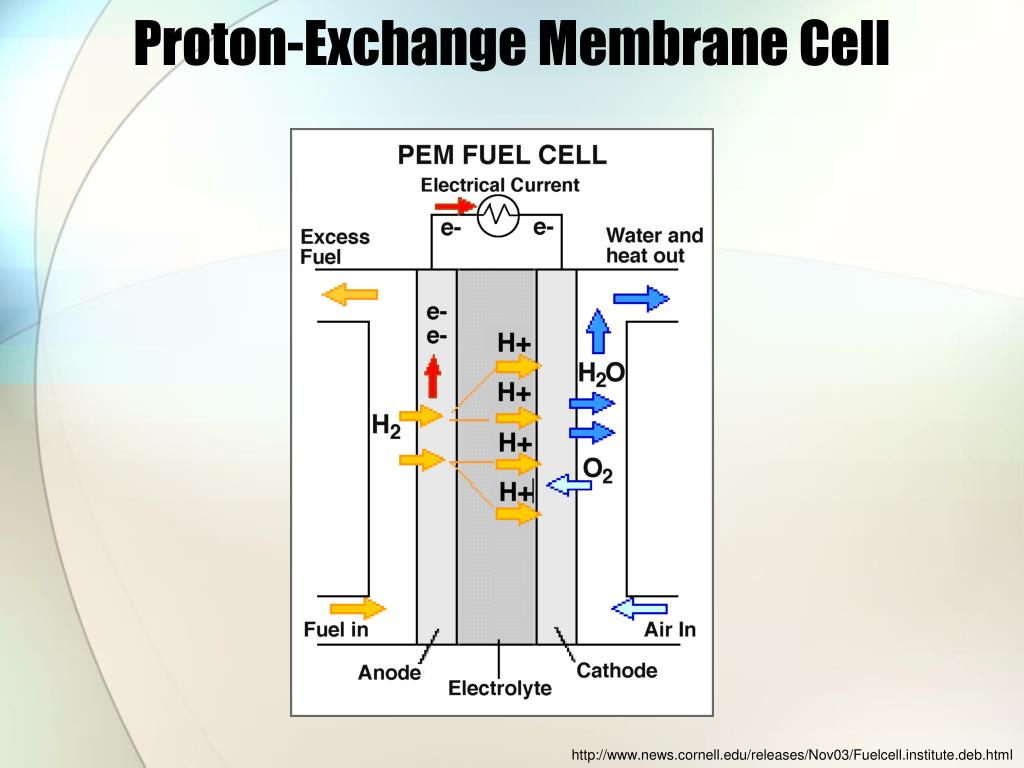 hydrogen oxygen fuel cell diagram oxygen into a cell