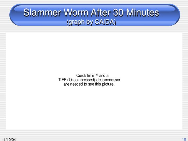 Slammer Worm After 30 Minutes