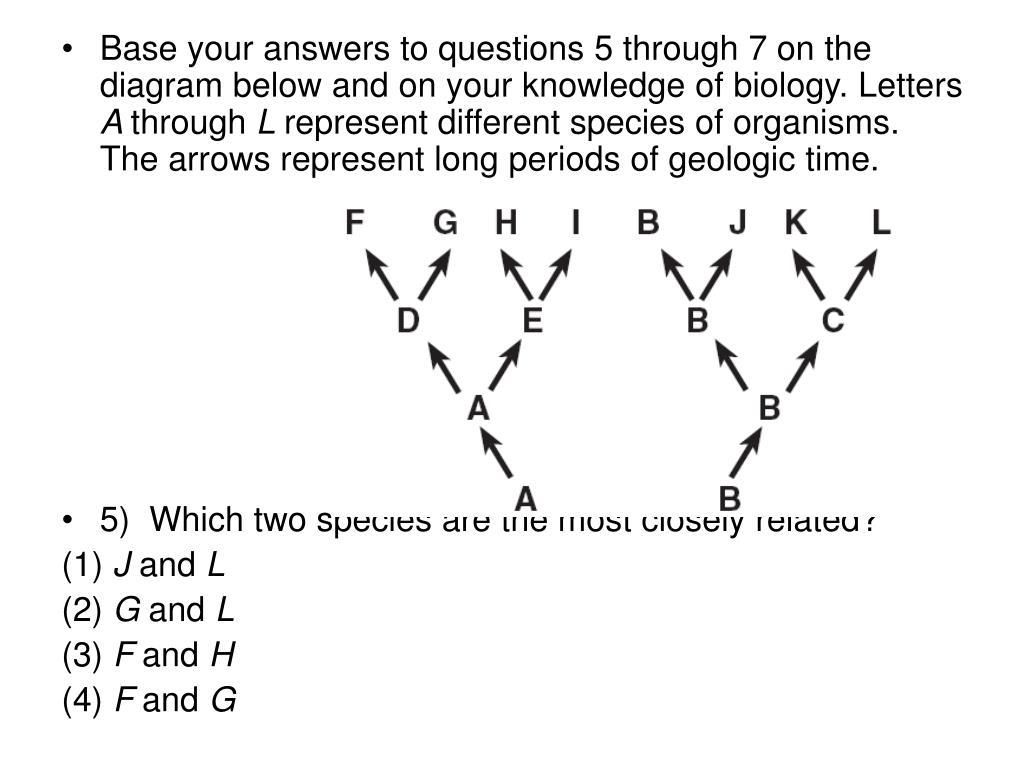 Base your answers to questions 5 through 7 on the diagram below and on your knowledge of biology. Letters