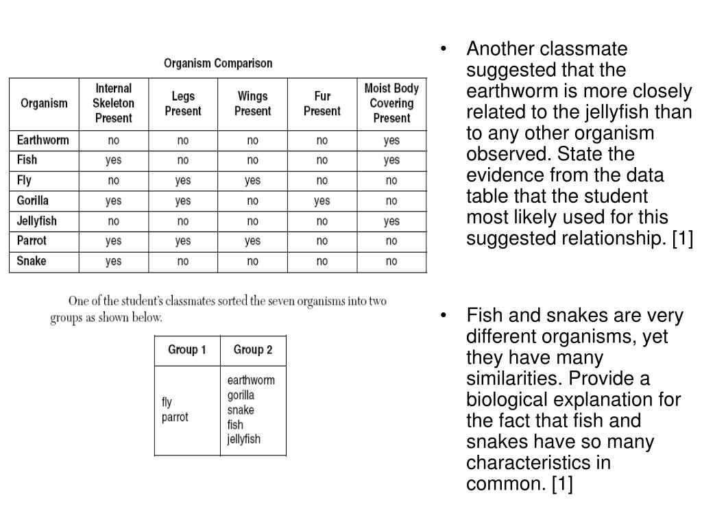 Another classmate suggested that the earthworm is more closely related to the jellyfish than to any other organism observed. State the evidence from the data table that the student most likely used for this suggested relationship. [1]