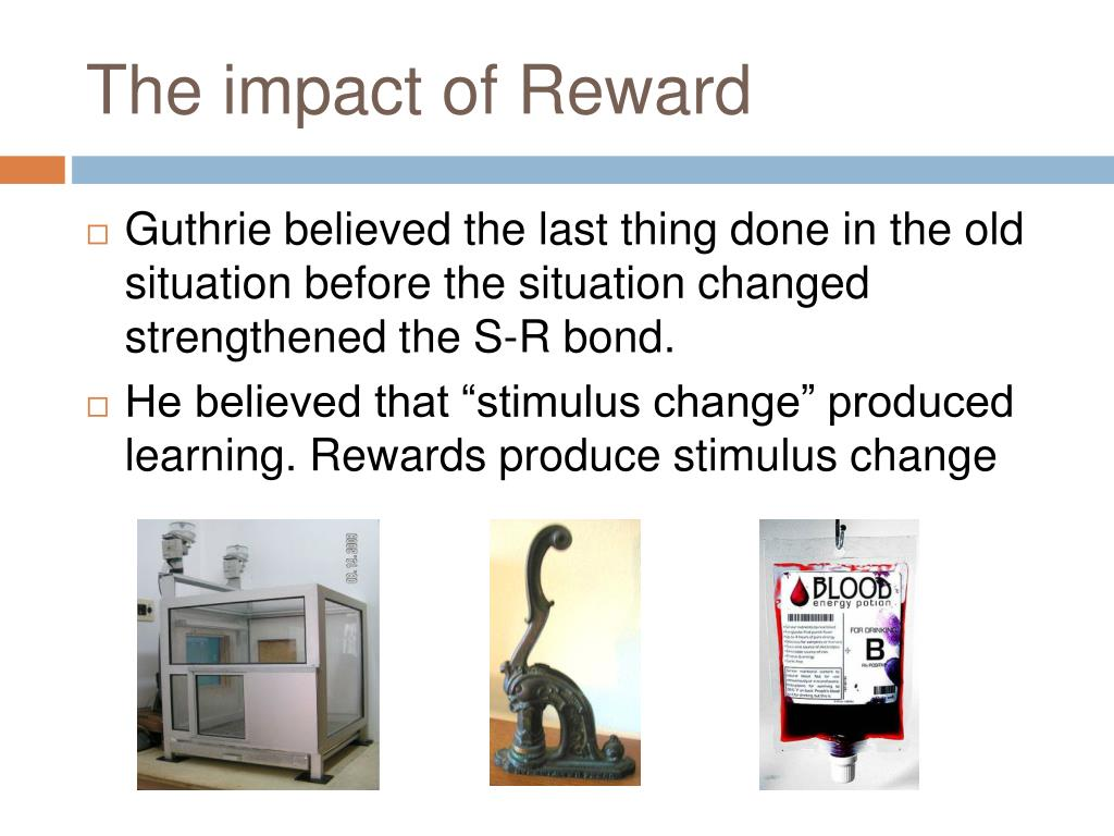 The impact of Reward