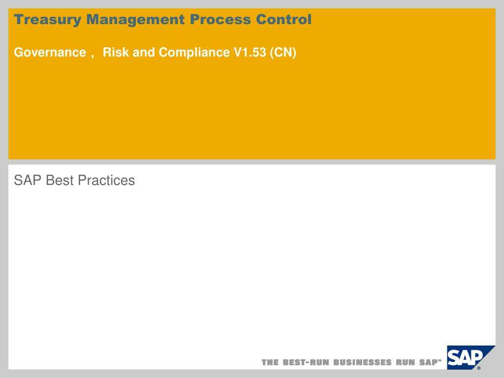 Treasury Management Process Control