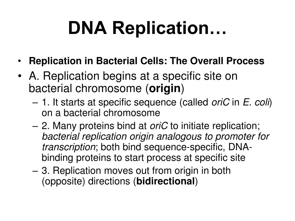 the sequence in dna replication During dna replication, which sequence of nucleotides will bond to the sequence ggtaatc was asked by shelly notetaker on may 31 2017 539 students have viewed the answer on studysoup.