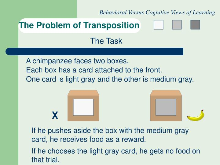 The problem of transposition2