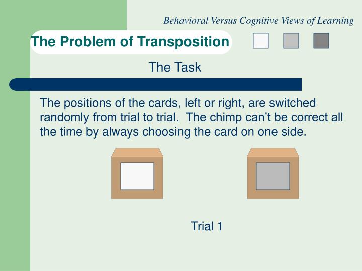 The problem of transposition3 l.jpg
