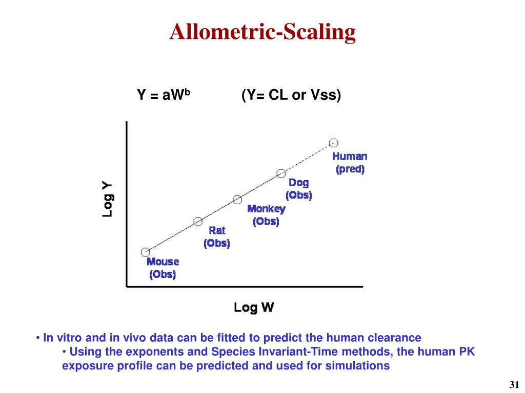 Allometric-Scaling