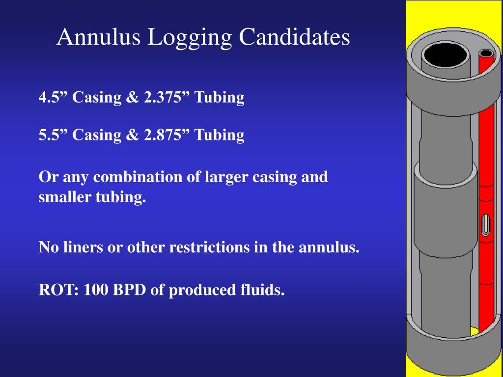 Annulus Logging Candidates