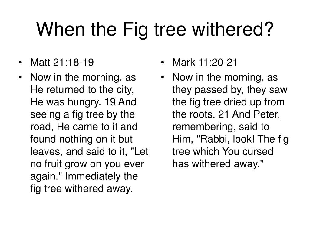 Matt 21:18-19