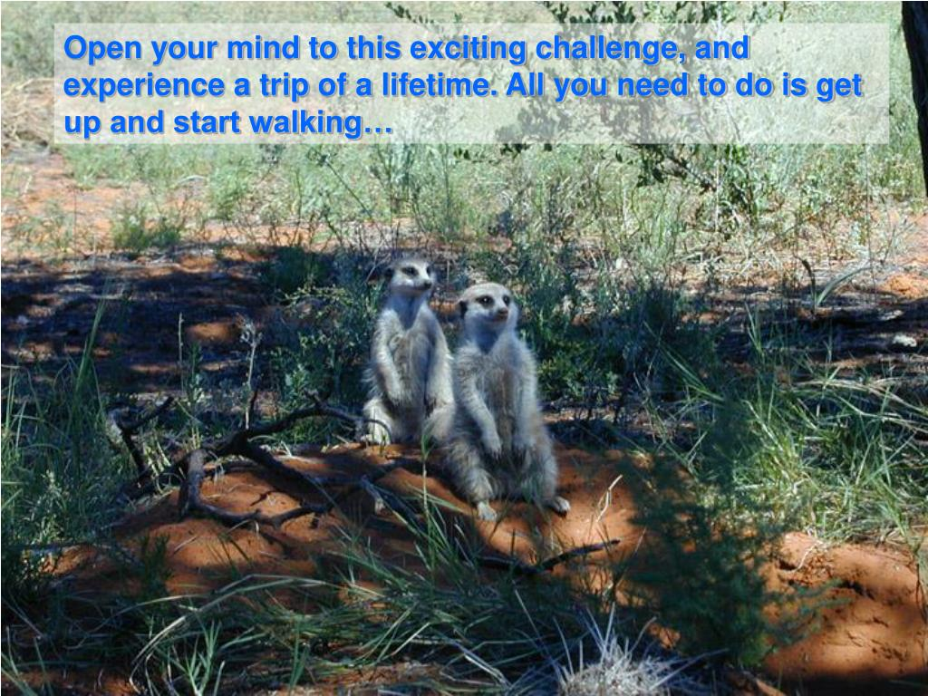 Open your mind to this exciting challenge, and experience a trip of a lifetime. All you need to do is get up and start walking…