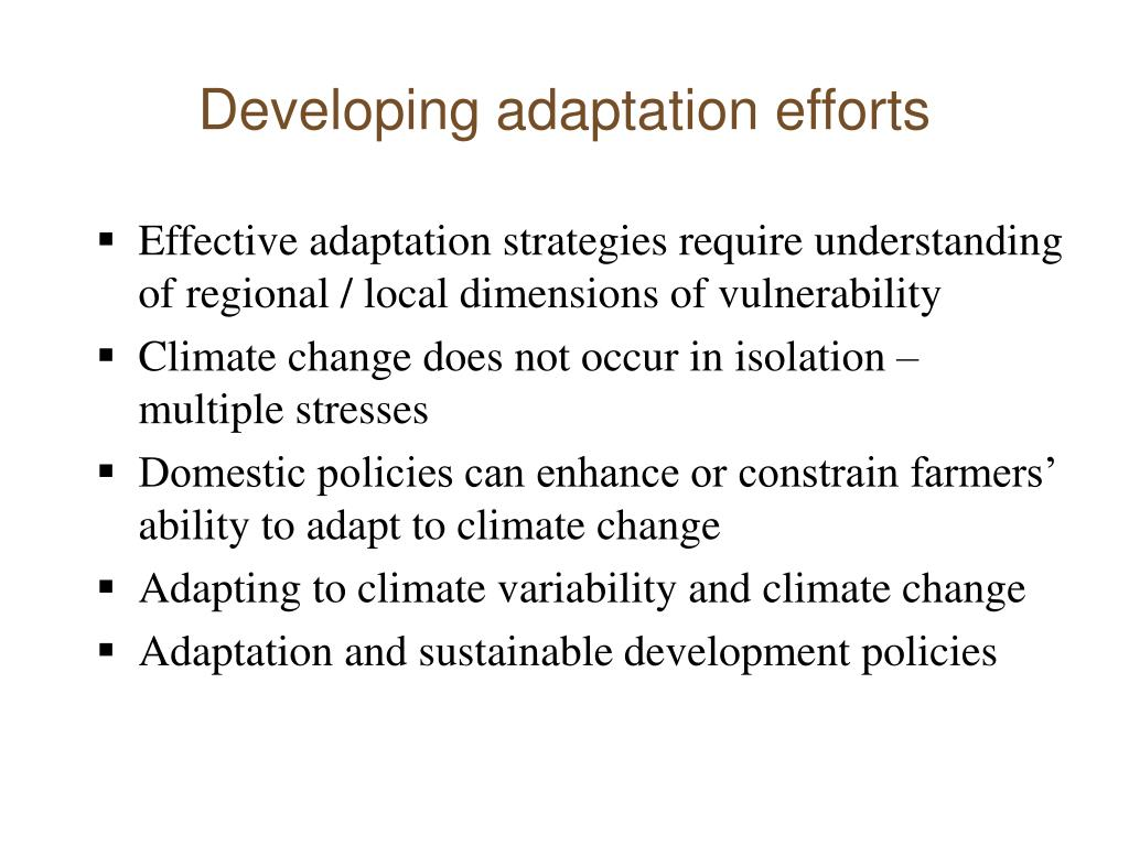 Developing adaptation efforts