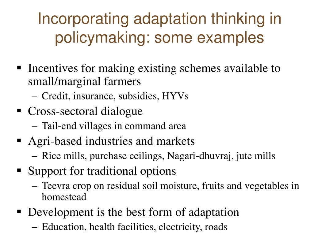 Incorporating adaptation thinking in policymaking: some examples