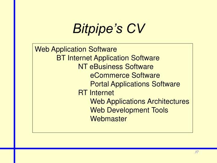 Bitpipe's CV
