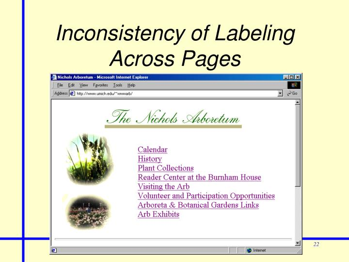 Inconsistency of Labeling Across Pages